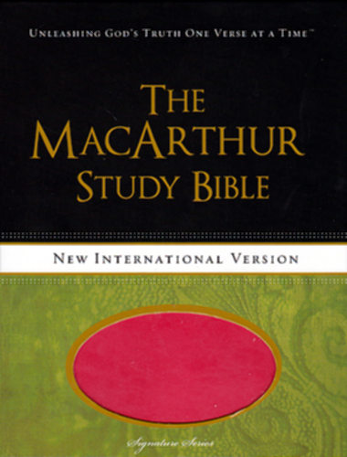 NIV Teen & College Bibles