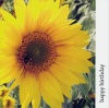 Card - Happy Birthday, Yellow Sunflower with NIV Scripture Text