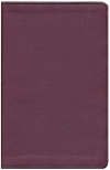 ESV Value Thinline Bible, Burgundy Soft Leather-Look