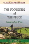 The Footsteps of the Flock