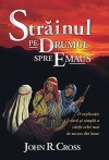 The Stranger on the Road to Emmaus, Romanian Edition