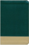 HCSB - The Teacher's Bible, Green and Tan LeatherTouch