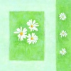 Ladies Blank Card - White flowers