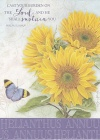 Get Well Card - Helianthus Annuus - Psalm 55 vs 22