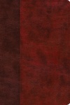 ESV Story of Redemption Bible, Burgundy/Red TruTone