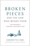 Broken Pieces and the God Who Mends Them, Lessons Learned on Mental Illness
