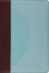ESV Study Bible, Personal Size, Trutone Chocolate/Blue, Ivy Design
