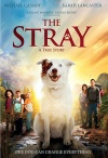 DVD - The Stray