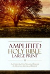Amplified Large Print Bible, Hardback Edition