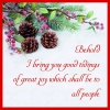 Christmas Cards - Behold I Bring You Good Tidings - Pack of 10 - CMS