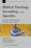 Biblical Theology According to the Apostles - NSBT