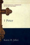 1 Peter - Baker Exegetical Commentary - BECNT