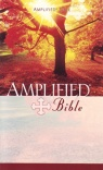 Amplified Bible (Hardback)