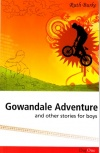 Gowandale Adventure & Other Stories For Boys