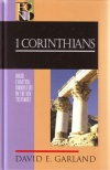 1 Corinthians - Baker Exegetical Commentary - BECNT