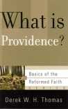 What is Providence ? - BORF
