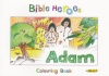 Bible Heroes Colouring Book - Adam