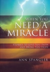 When You Need a Miracle (Paperback)