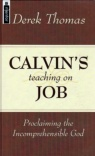 Calvin's Teaching on Job - Mentor Series