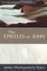 Epistles of John: An Expositional Commentary