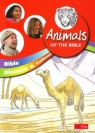 Bible Discover & Learn - Animals