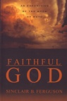 Faithful God: Exposition of the Book of Ruth
