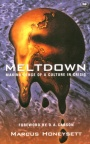 Meltdown - Making Sense of a Culture in Crisis