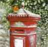 Christmas Cards - Post Box Robins - Pack of 10 Cards - CMS