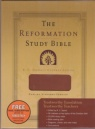 ESV - The Reformation Study Bible, Tan Leather Like