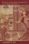 1 Corinthians (Revised Edition) - NICNT
