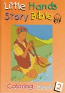 Little Hands Story Bible, Colouring  (Orange)