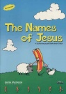 The Names of Jesus - Puzzle Activity Book