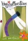 NIV Bug Collection Bible - Dragonfly - Duo Tone