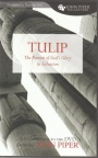 Tulip - The Pursuit of God of Glory in Salvation - Study Guide