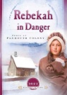 Sisters in Time - Rebekah in Danger, Peril at the Plymouth Colony